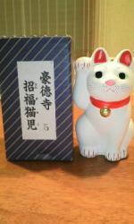 招福猫児1