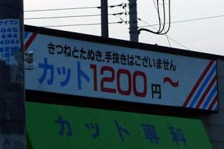P1060762es.jpg