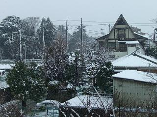 なんちゃって雪景色