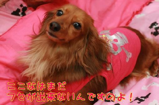 IMG_5480.jpg