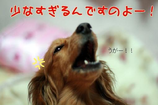 IMG_5731.jpg
