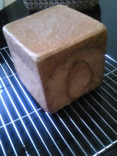2009120ココア食パン