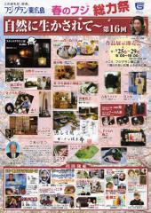 fuji038.jpg