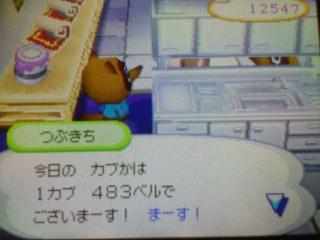 20070112174618.jpg