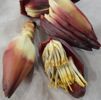 花バナナ2