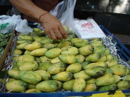 タイミニマンゴー