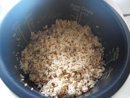 玄米酵素1