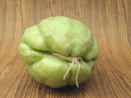 野菜ハヤトウリ