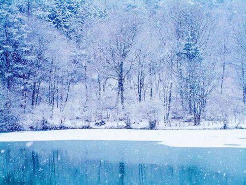 20080203 雪のち雨1