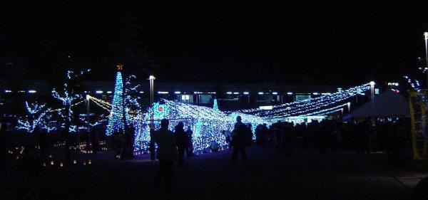 光の祭典15