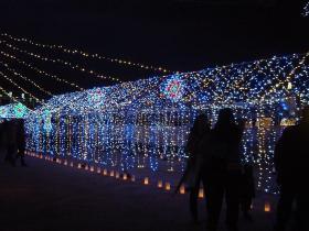 光の祭典09