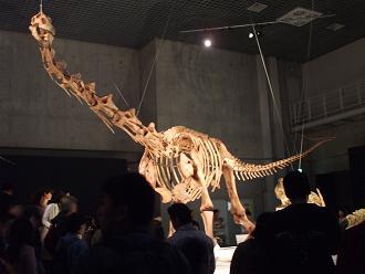 マシャカリサウルス B10