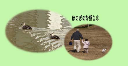 2009010701.jpg