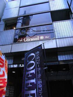 girasol2.jpg