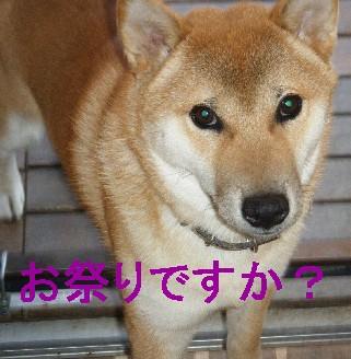 2008_10130019.jpg