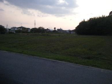 2008_10200001.jpg