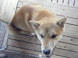 2009_01050012.jpg
