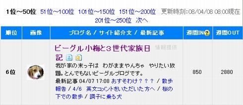2008-4-8.jpg
