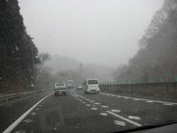 雪だーL(゚□゚ )