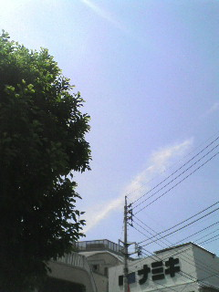 20090515155211