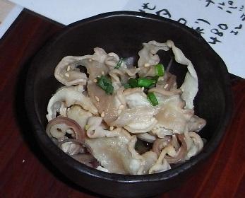 tagayasu2