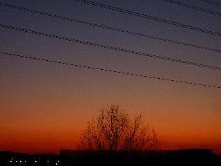 20100109_008.jpg