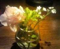 flowerinmysoul.jpg