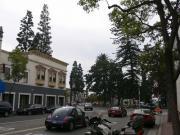OLD TOWN ORANGE
