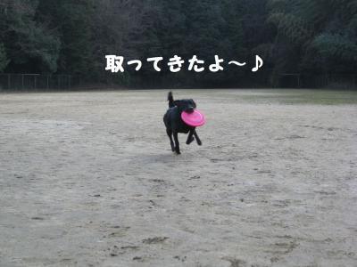 IMG_0725.jpg
