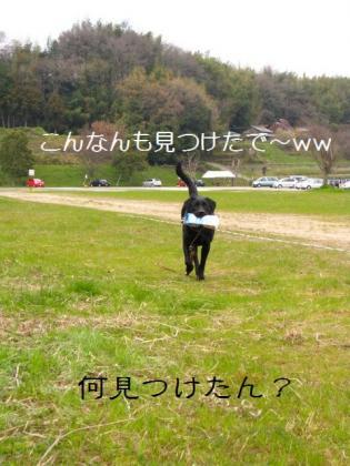 IMG_2039.jpg