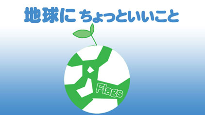 flagscm3.jpg
