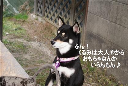 DSC04353く_R