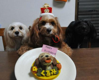 姉妹とケーキと