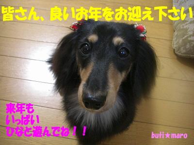 来年もよろしく!!