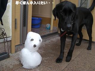 雪だるまなんて興味ないねんアタシ!