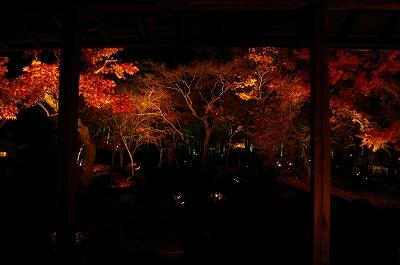 2008 園光寺 (10)