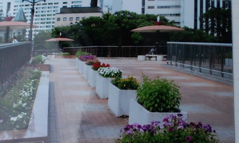 九州中洲のなか川にかかる橋の上の花壇
