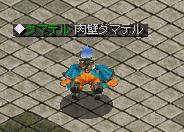 ダマテル(黙)