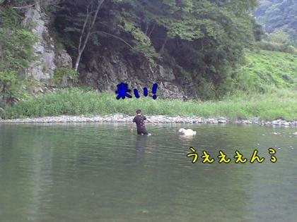 CA390009_20080916145534.jpg