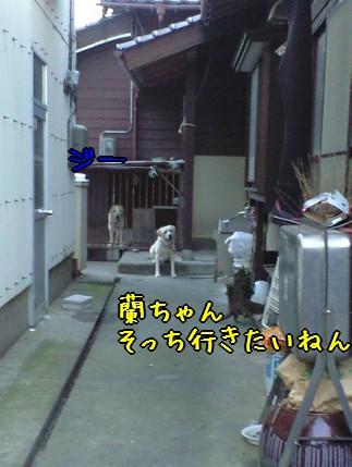 CA390037_20080916145948.jpg