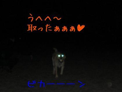 CIMG0068.jpg