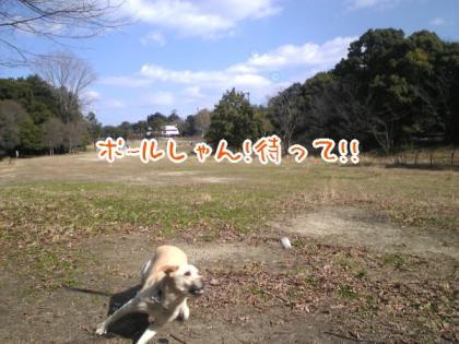 SBSH0100.jpg