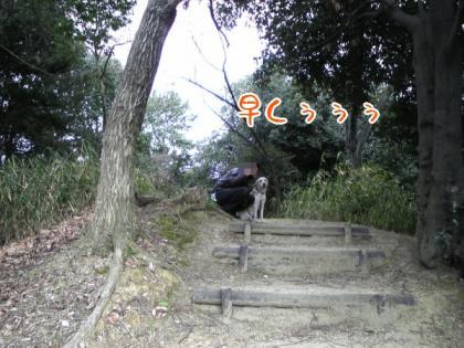 SBSH0136.jpg