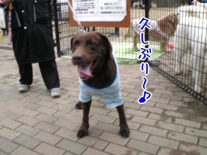 SBSH0157.jpg