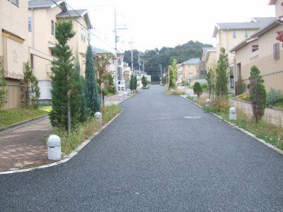 8.10.23散歩3