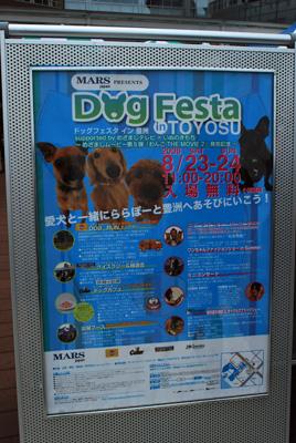 DogFesta