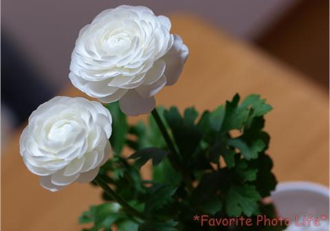 お花をもらいました1