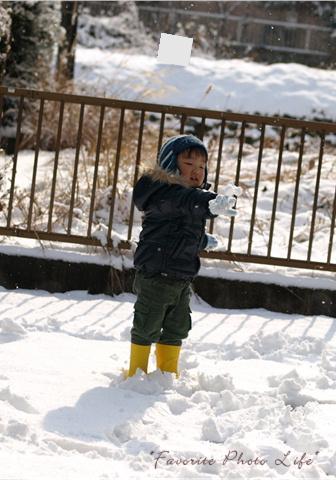 3度目の雪4