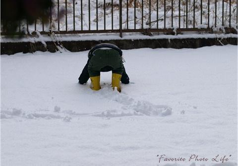 3度目の雪2