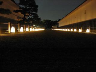 2008sakura004